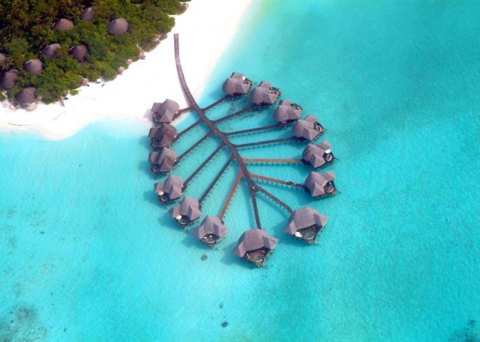 Coco Palm Dhuni Kolhu luxhotels (10)