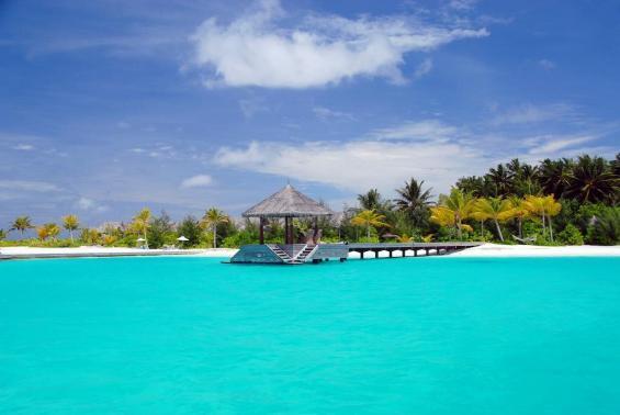 Naladhu Maldives Luxhotels (12)