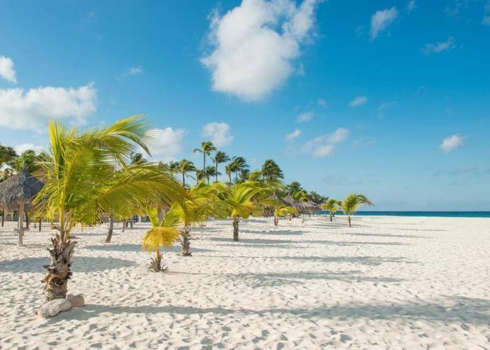 Karaiby Hotele Mancheboo Resort Aruba
