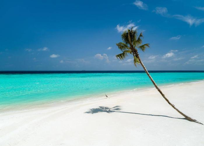 LUX North Male Atoll Luxhotels (23)